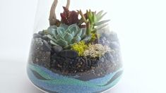 Remember when everyone thought terrariums were just a fad making a comeback? With so many amazing containers and varied ways to create th...