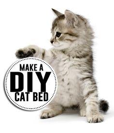 Make a DIY cat bed. So many cute tutorials!