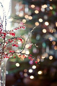 Luces de Navidad: