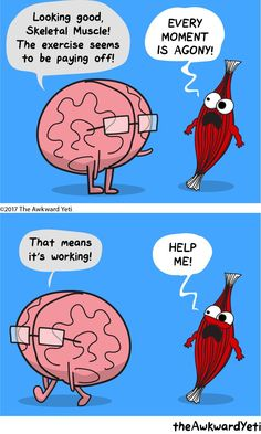 The Awkward Yeti comics Skeletal Muscle Workout Memes, Gym Memes, Gym Humor, Funny Memes, Hilarious, Workouts, Fitness Memes, Nerd Memes, Running Memes