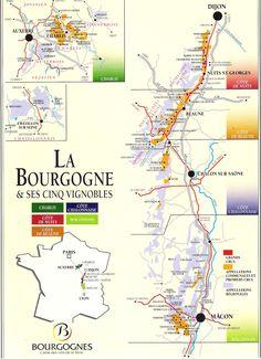 Bourgogne or Burgundy Wine Region of France