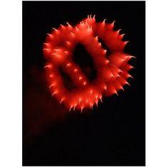 Trademark Art Abstract Fireworks Iii Canvas Art by Kurt Shaffer, Size: 26 x 32, Multicolor