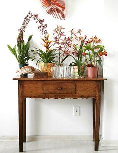 Até um pequeno aparador serve para expor a suas flores e orquídeas