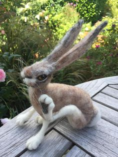 Hare/Jack Rabbit/Needle Felted Hare/Hare Sculpture/Jack Rabbit