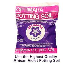 African Violets, Begonias, Gift Items, Ceramic Pots and Optimara Plant Care Products Amazon Rewards, Violet Plant, Terrarium Plants, African Violet, Ceramic Pots, Potting Soil, Party Packs, Violets, Plant Care