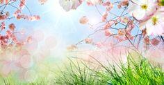 Weź udział w naszym konkursie i przypnij wiosnę! Szczegóły na wortalu :)