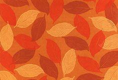 Cut Leaves Rug, Spice on OneKingsLane.com