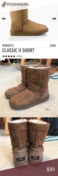 Short classic chesnut uggs These uggs are in great condition, minor spots on the outside from wear UGG Shoes