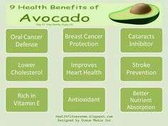 Science Backed Anti-Cancer Benefits of Avocado Get Healthy, Healthy Life, Healthy Eating, Clean Eating, Health And Nutrition, Health And Wellness, Nutrition Tips, Wellness Tips, Raw Food Recipes