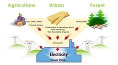 Renewable Energy : California Biomass Energy Alliance
