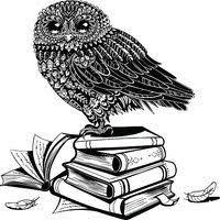 Výsledek obrázku pro kreslená sova s knihou