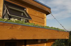 a small garden on a 96 square feet tiny house designed and built by Shelter Wise in Portland, Oregon.