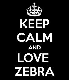 That I will. How could anyone not love zebra?