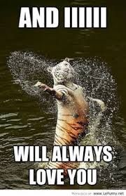 funny animal quotes - Google Search                                                                                                                                                      More