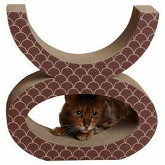 "Corrugated cardboard cat scratcher with a scales motif and open figure-eight silhouette.   Product: Cat scratcherConstruction Material: Corrugated cardboardColor: BrownFeatures:  Natural paperboard provides a coarse, therapeutic surface for scratchingStylish and sleek designDesigned with comfort and function Dimensions: 16"" H x 8.5"" WCleaning and Care: Spot clean with damp cloth, dispose once marked"