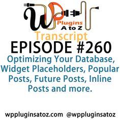 Transcript of Episode 260 - http://plugins.wpsupport.ca/transcript-episode-260/