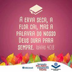 Isaías 40, 8