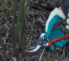 Garden Tools, Gardening, Diy, Bricolage, Yard Tools, Lawn And Garden, Do It Yourself, Homemade, Diys