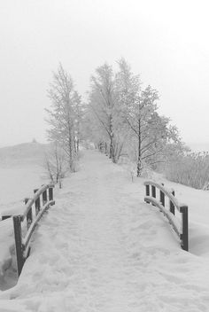 You can take away a lot of things, but you will never take my kind heart, or my love of winter.