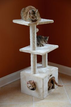 """""""One of the best things I ever invested in were two good, sturdy cat trees...I've gotten a couple Armarkat cat trees from Woot! when they come around — a large one about 8 feet high and a smaller one about 4 feet high and they LOVE them."""" — RCIAG"""