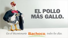 """EL POLLO MAS GALLO"" / Espectacular / Fuente: Bachoco"