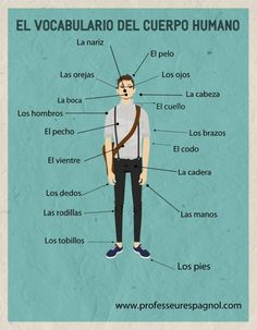 el vocabulario del cuerpo human...  professeuresspagnol.com