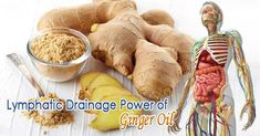 Health Remedies Lymphatic Drainage Ginger Oil – - Lymphatic Drainage Ginger Massage Oil is a great natural solution for lymphatic drainage, edema, spider veins and varicose veins. Extracted from ginger root, ginger oil benefits you by relieving swelling Holistic Remedies, Natural Home Remedies, Health Remedies, Varicose Veins Treatment, Health Benefits Of Ginger, Oil Benefits, Drainage, Ginger Essential Oil, Herbs