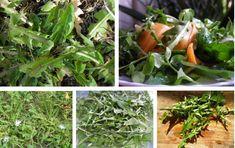 Gyermekláncfű Seaweed Salad, Spinach, Gardening, Vegetables, Ethnic Recipes, Food, Lawn And Garden, Essen, Vegetable Recipes