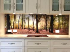 Adelaide Splashbacks | Adelaide Precision Glass