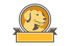 Yellow Labrador Golden Retriever  - Illustrations. Illustration of a yellow labrador golden retriever dog head looking to the side viewed from front set inside circle with sunburst in the background done in retro style.  #illustration  #YellowLabradorGoldenRetriever