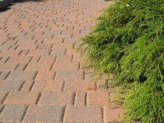 Paving Stones, Monet, Sidewalk, Red, Black, Walkway, Cobblestone Pavers, Black People, Outdoor Pavers