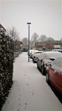 Momentaufnbahme: Winter in Münster ist zurück... (04.02.2018)