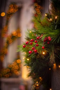 City Christmas Lights and Red Berry and Christmas Tree Branches Wallpaper Natal, Xmas Wallpaper, Christmas Phone Wallpaper, Wallpaper Iphone Cute, Christmas Mood, Noel Christmas, Christmas Colors, Christmas Decorations, Holiday Decor