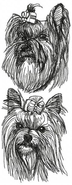 Advanced Embroidery Designs - Yorkshire Terrier Set