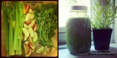 8 Lung Power | Green Juice Recipe  http://www.greenjuiceaday.com/green-juice-recipe-lung-power/#