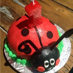 Super cute ladybug 1st birthday party