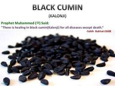 Cure for every disease except death Allah Islam, Islam Quran, Islam Muslim, Islamic Messages, Islamic Quotes, Islam For Kids, Religion, Learn Islam, Islamic Teachings