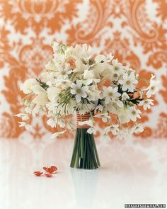 apricot trumpets of cream-color narcissus and yellow-green anthers of white clematis