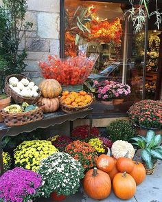 Cozy sweaters, crunchy leaves, window cornucopia.🎃🍁🍂Fall in #nyc #autumn #pumpkin #october #window #display #seasons #hygnyc