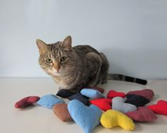 T-Shirt Pet Toys: Old tees are the perfect material for pet toys. The t-shirt material is soft, so it'll be something they can sleep with. Source: Etsy user fbstudiovt