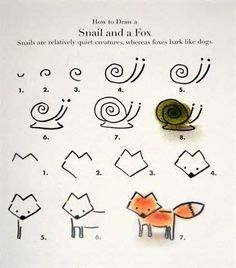How to draw a snail and a fox