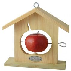 Oh my goodness, my girlies would LOVE this... but I'm pretty sure I can make it myself.  A metal skewer or piece from hardware store and small drill should do the trick for our existing wooden bird feeder.