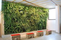 Paredes verdes, decoración ecológica | Ideas Eco