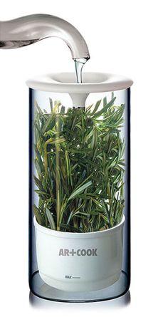 Herb Keeper - keeps herbs fresh up to 2 weeks
