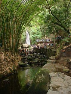 Es un parque Los Chorros en Caracas, Venezuela. Es un buen lugar para estar…