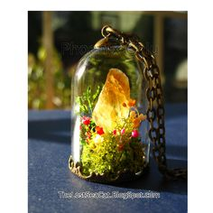 Terrarium jewelry Plants necklace Raw Citrine pendant Fairy garden November Birthstone Crystal Miniature Terrarium Real Flower Moss