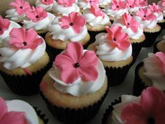 an insanely cute website full to the brim with cute little cupcakes!