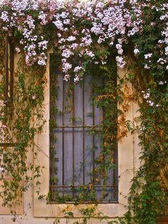 Window, Les Baux de Provence, France