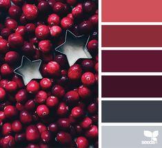 Color Season via @designseeds