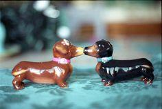 kissing dachshunds!